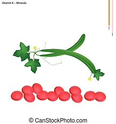 Snake Cucumber with Vitamin K and Minerals - Healthcare...