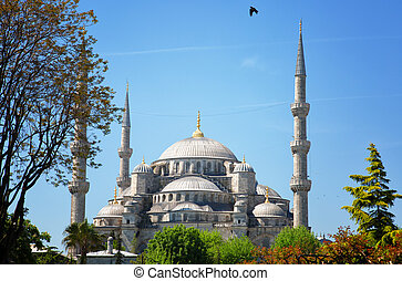 Sultan Ahmed Mosque (Blue mosque) in Istanbul in the sunny day, Turkey