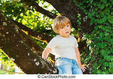 Outdoor portrait of a cute little boy sitting on a tree