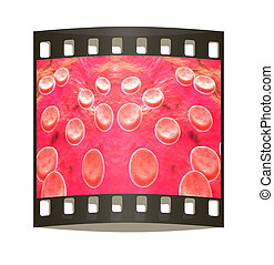 Blood cells The film strip