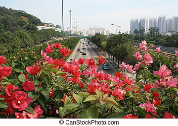 guangzhou - view of the major trunk road from flowers in...