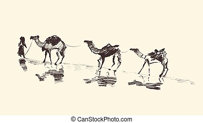 Caravan Camels Desert Vector Illustration Sketch - Caravan...