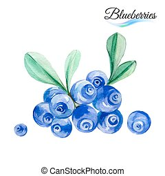 Blueberries - Watercolor fruit blueberries isolated on white...