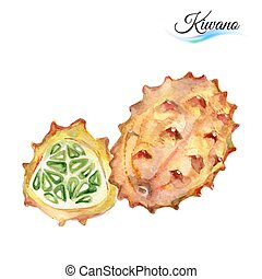 Kiwano - Watercolor fruit kiwano isolated on white...