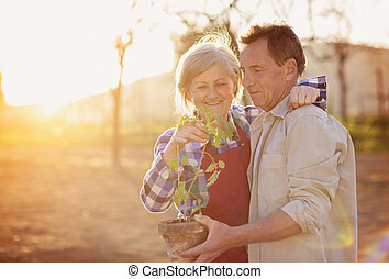 Senior couple in their garden