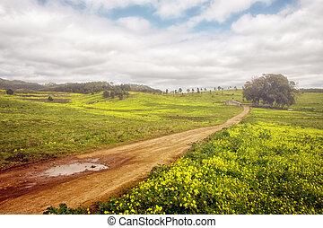 Fruehjahr, landschaftsbild