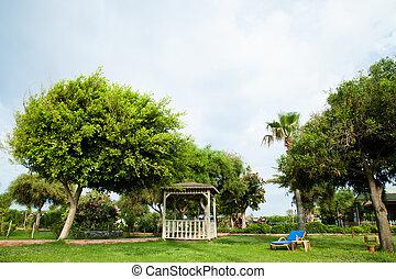 bello, verde, giardino