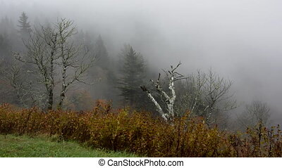 Fog In Mountains - Thick fog blows up over Devils Courthouse...