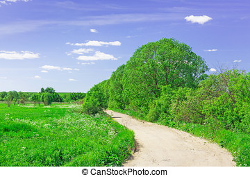 old country road on a bright Sunny day