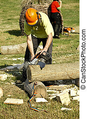Woodcutter - Lumberjack is cutting a wooden trunk