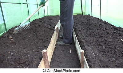 man level soil hothouse - gardener man preparing leveling...
