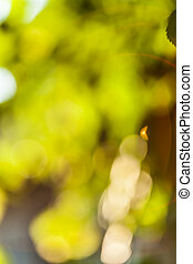 Abstract background summer season - Abstract yellow and...
