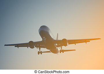 Landing of the passenger plane - Landing of the passenger...