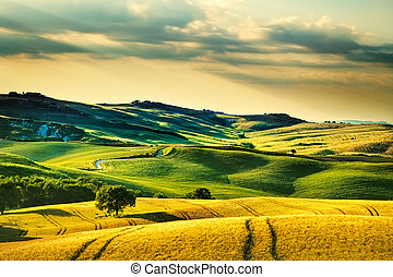 Tuscany spring, rolling hills on sunset. Volterra rural...