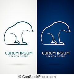 Vector image of an bear design on white background and blue...