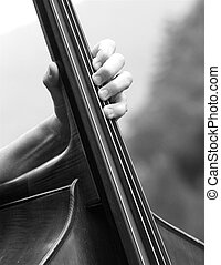 Double bass player - A male playing double bass. Black and...