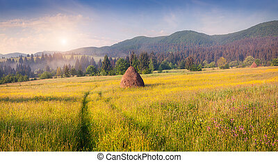 Haymaking in a Carpathian village Colorful summer sunrise in...