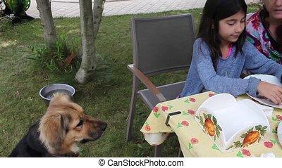 Girl Feeding Dog