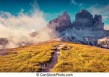 Colorful summer evening in the National Park Tre Cime di...