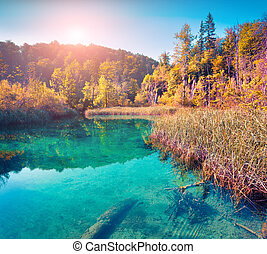 Colorful autumn morning in the Plitvice Lakes National Park...