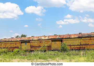 Rusty Freight Cars in Weeds