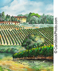 Vineyard landscape - Beautiful vineyards landscape. Digital...