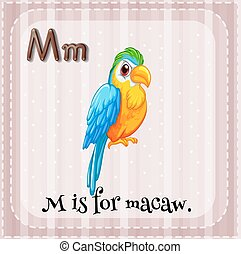 Letter M - Flashcard of letter M that stands for macaw