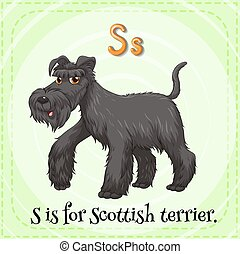 Letter S - Flashcard of a letter S with a picture of of...