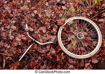 Decomposed bicycle parts - Decomposed bicycle wheel and...
