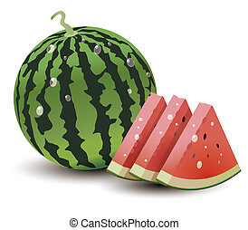 watermelon - illustration drawing of green watermelon and...