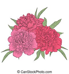 bouquet of pink peonies with green