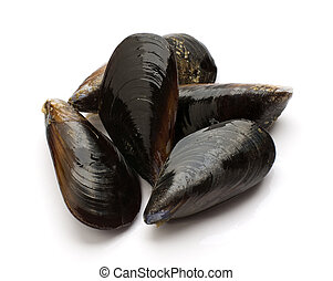 Mussels - Fresh blue mussels isolated on white close up