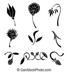 Set of black flower design elements