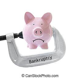bankruptcy bank vice