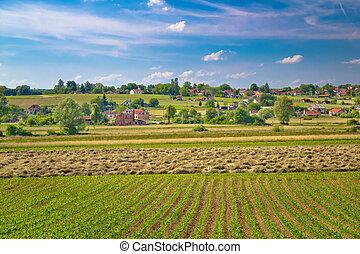 Village of Majurec in green landscape