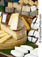 Assortment of fresh different cheese at shop stand