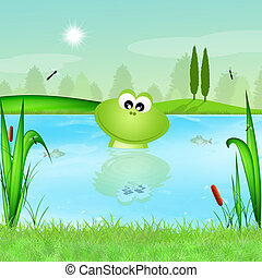 funny frog in the pond - illustration of funny frog in the...