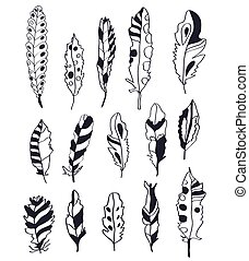 Feathers set - line hand drawn design