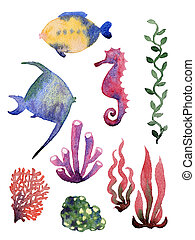 Set of different sea shells,corals and starfish. Watercolor...