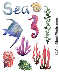 Set of different sea shells,corals and starfish Watercolor...