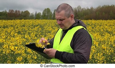 Farmer with folder near yellow rape field