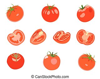 Set of red Tomatos. Vector illustration. Isolated on white background