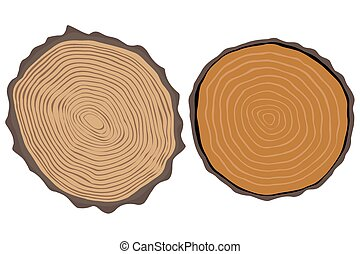 Wood texture and elements isolated. Vector illustration