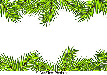 Fir framing isolated on white background