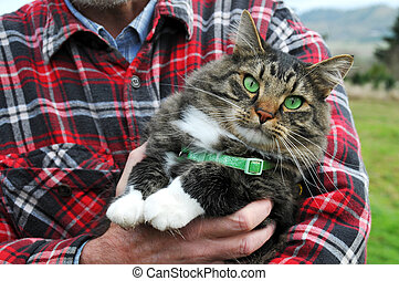 Animal Rescue Protection Man holding a maine coon cat with...