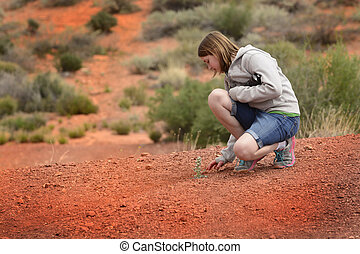 Single Green Plant in Desert Sand Heat with Girl