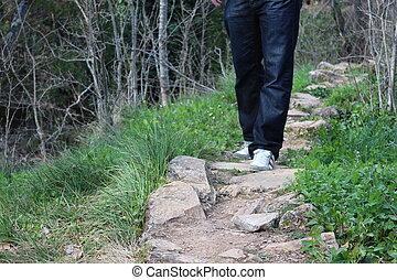 walking in field way - Creative design of walking in field...