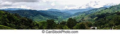 Cameron Highlands - Panorama Tea Plantations at Cameron...