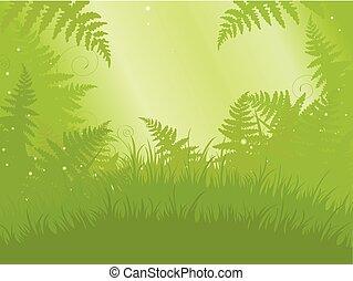 Fern Meadow - Illustration of fern meadow background