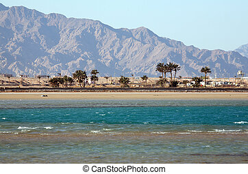Egypt, Dahab, Sinai Peninsula. Red sea. - Rest in Egypt, the...